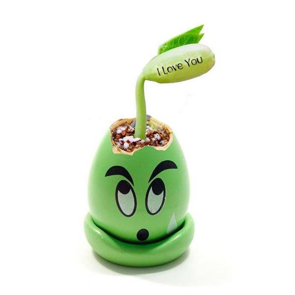 """Kouzelná fazolka s nápisem """"I love you"""""""