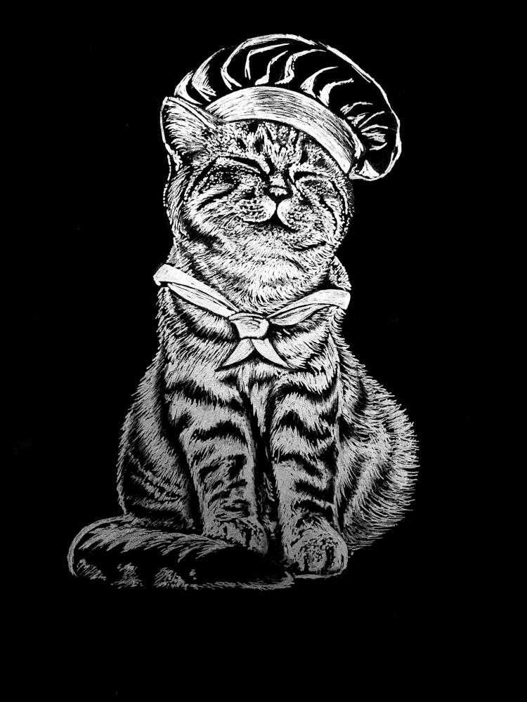 Bydlení a domácnost - Obraz na černém papíru - Kocour s čepicí