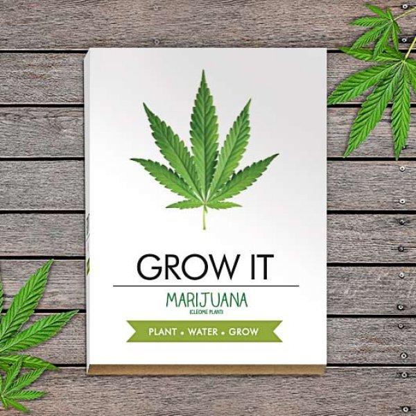 Bydlení a domácnost - Grow it - vypěstuj si marihuanu