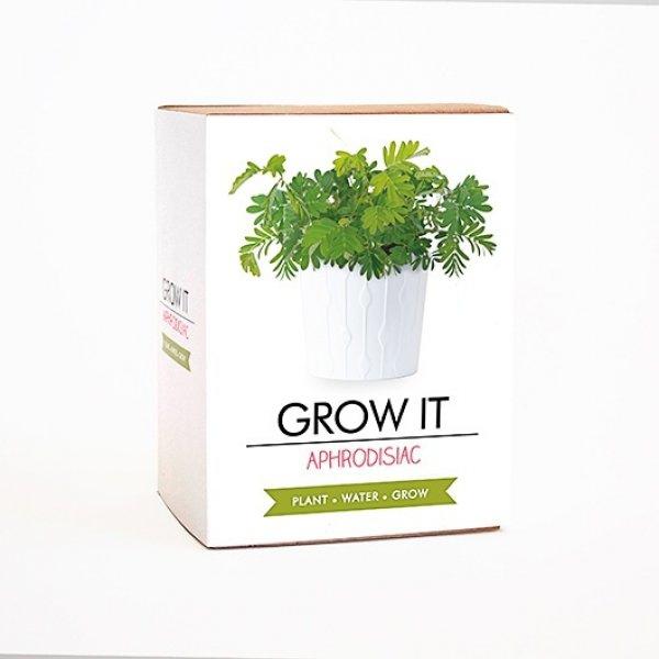 Bydlení a domácnost - Grow it - afrodiziakální rostlina