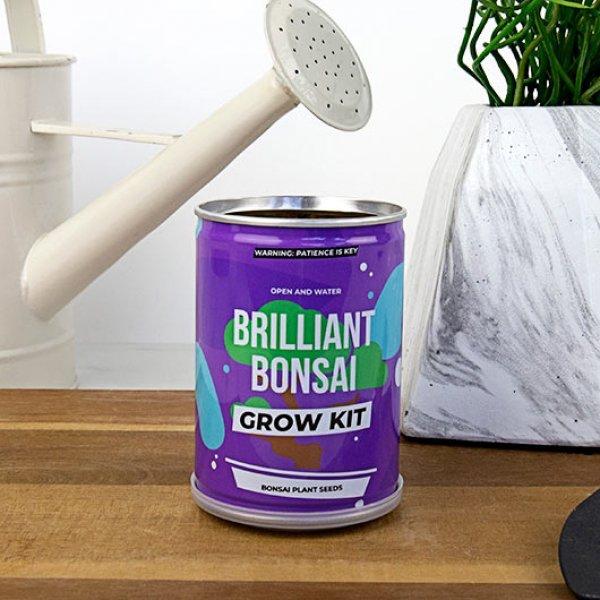 Bydlení a domácnost - Grow Tin - plechovka bonsai