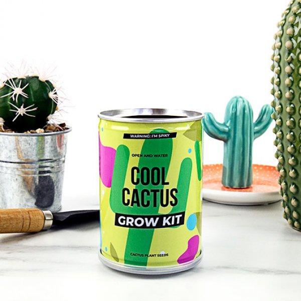 Bydlení a domácnost - Grow Tin - plechovka kaktusu