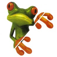 Nálepka na auto - žába