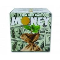 Grow your own money - Vypěstujte si peníze