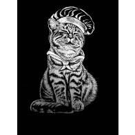 Obraz na černém papíru - Kocour s čepicí