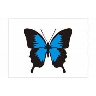 Nálepka na auto - barevný motýl
