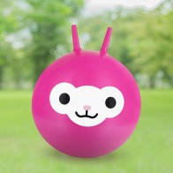 Skákací míč – lama